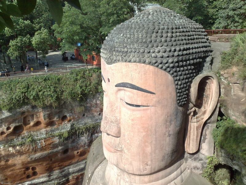 1-day Chengdu Panda and Leshan Giant Buddha Tour